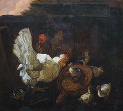 Chickens & Chicks, 18th Century