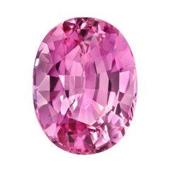 Pink Sapphire Ring Gem 4.03 Carat Oval Loose Gemstone