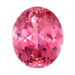 Pink Tourmaline Ring Gem 29.79 Carat Oval Loose Unset Gemstone
