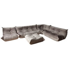 Pinkish Grey Velvet Togo Sofa Set by Michel Ducaroy for Ligne Roset, Set of 5