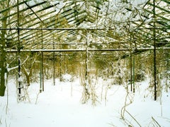 Untitled (Snow, 03.2010)