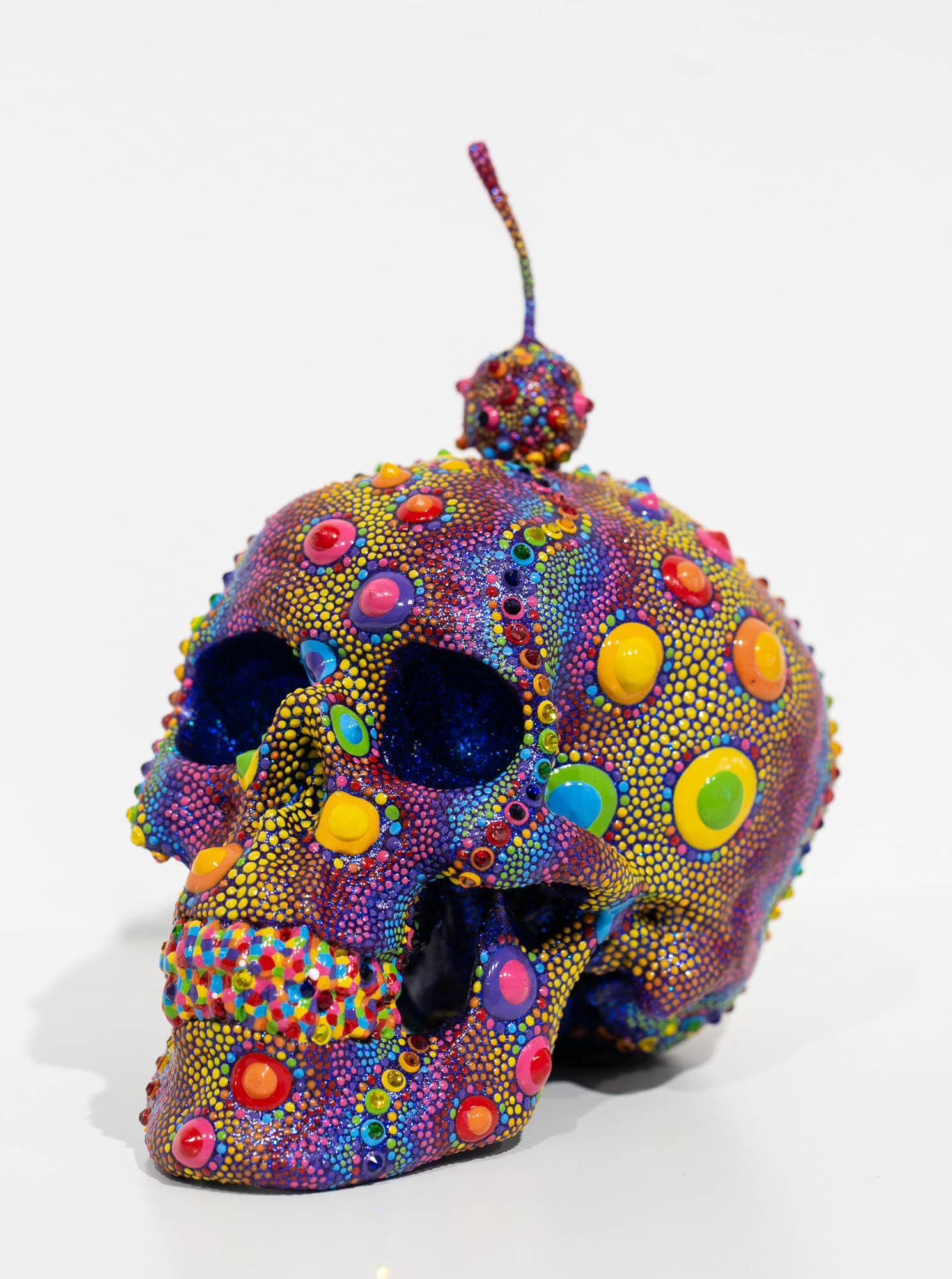 Candy Urchin Skull