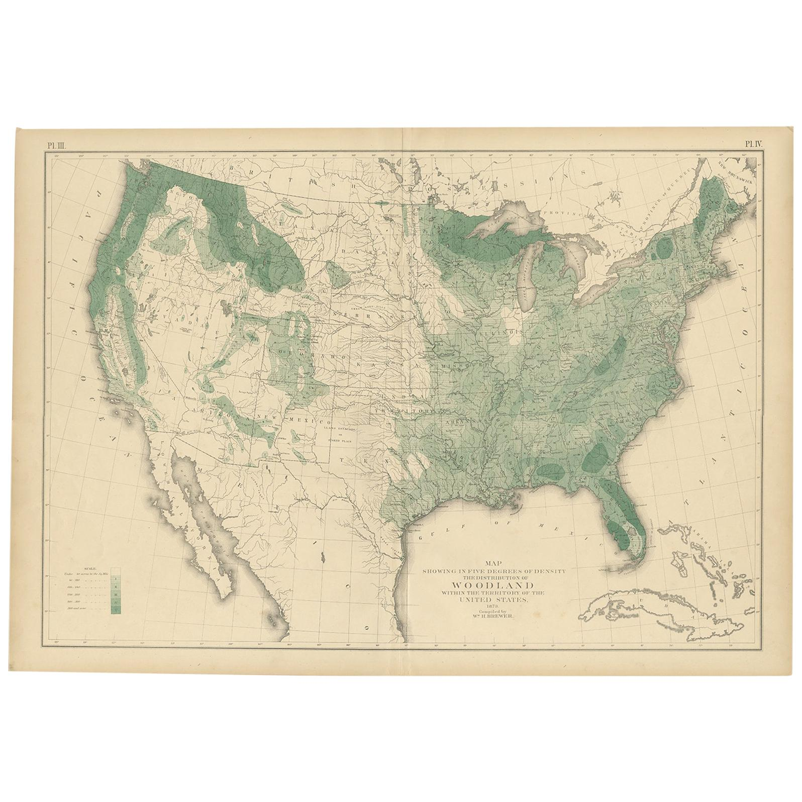 Pl. 3 Antique Map of the Woodland of the United States by Walker, 1874