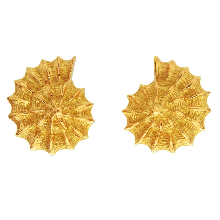 Plain Gold Scallop Shell Earrings For Sale