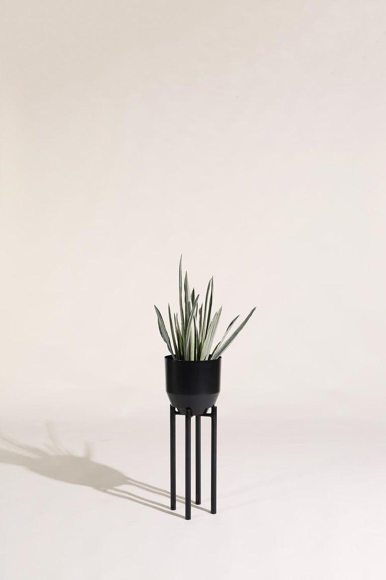 Modern Planter Stand, Black For Sale