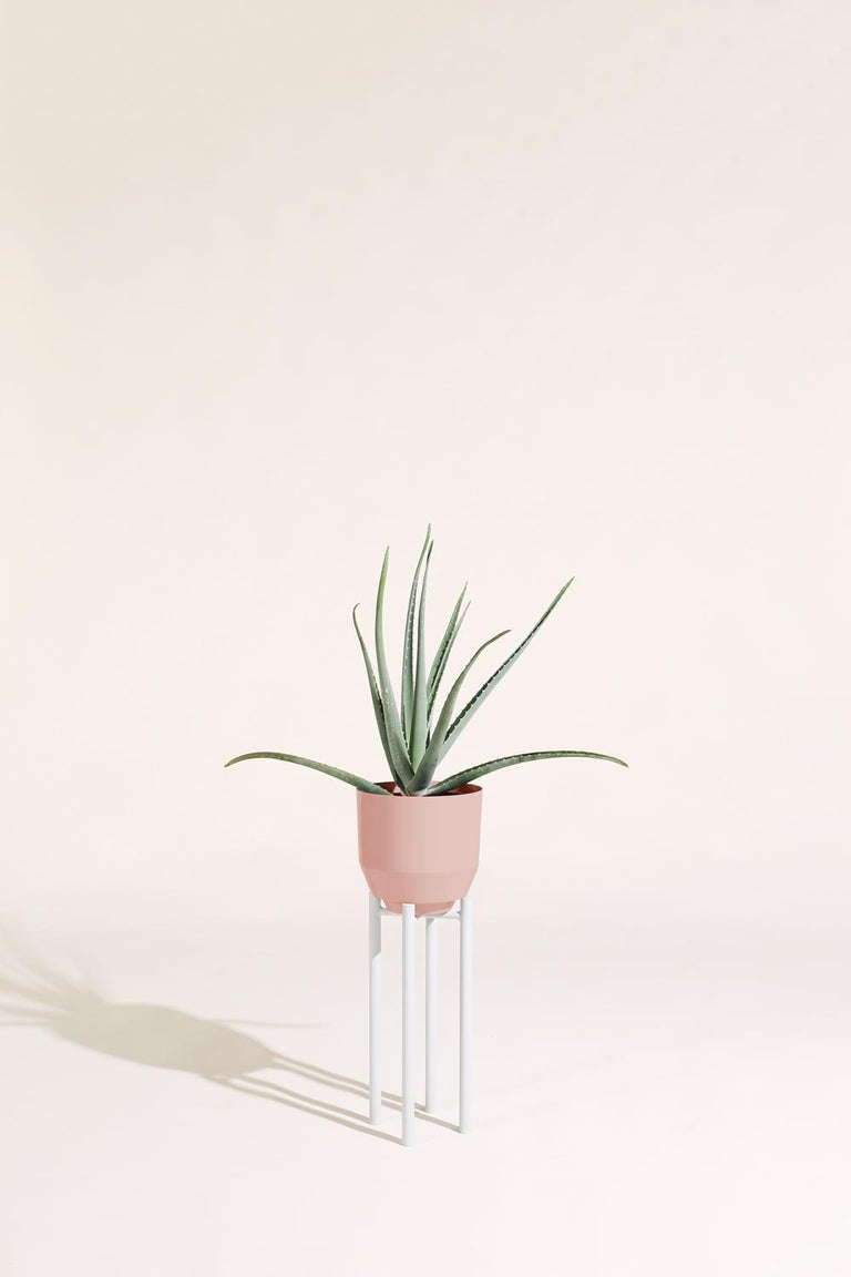 Modern Planter Stand, Pale Gray For Sale