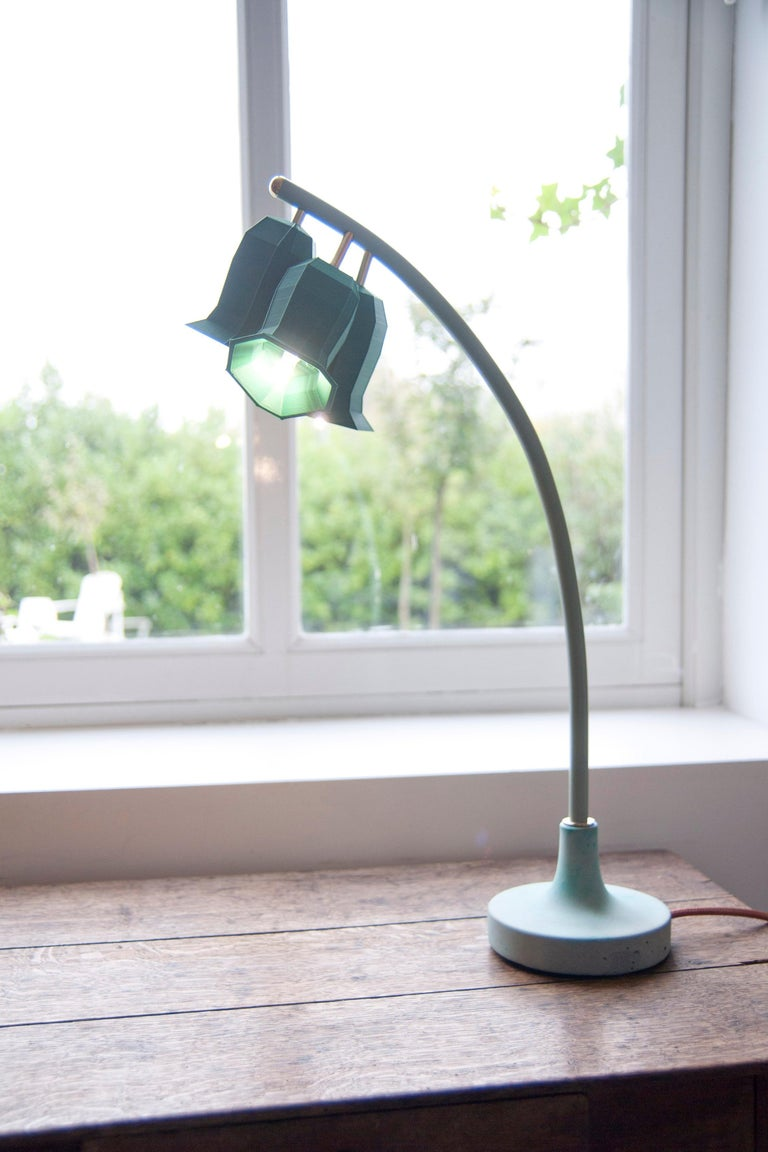 Plant lamps is a lighting collection that takes great inspiration by nature and the close observation of its wonderful shapes. The making process is the results of the combination of different creative approaches. Starting with watercolor drawings,
