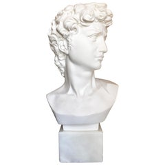 Plaster and Alabaster Marble Bust Sculpture by Giuseppe Bessi, Italy