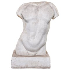 Plaster Bust of Male Torso