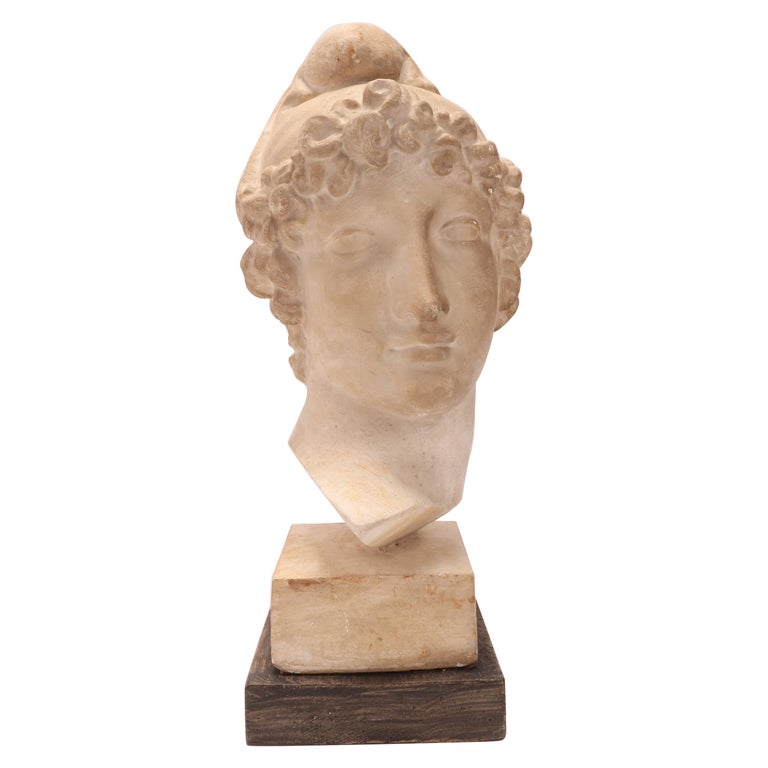 Plaster Cast: the Head of Paride, Italy, 1890 For Sale