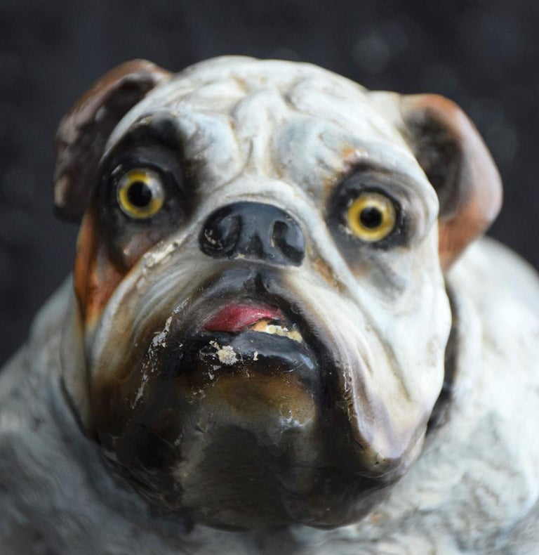 Handmade plaster English bull dog statue (Stamped), circa 1900.  Over the years this highly characteristic and decorative statue of an English bull dog must have belonged to many loving owners as its condition is so good for its age. This item is