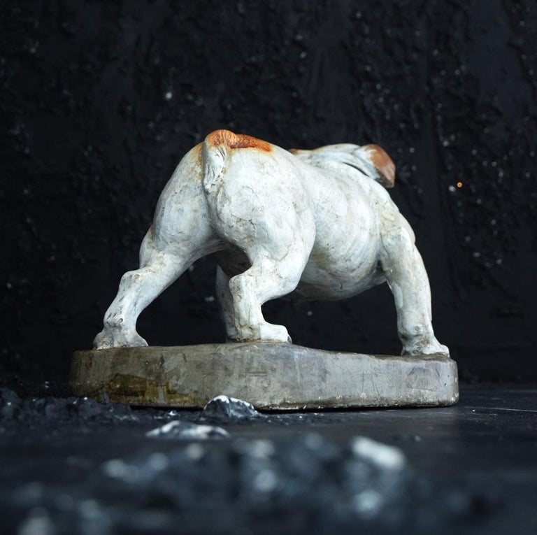 Plaster English Bull Dog Statue In Good Condition For Sale In London, GB