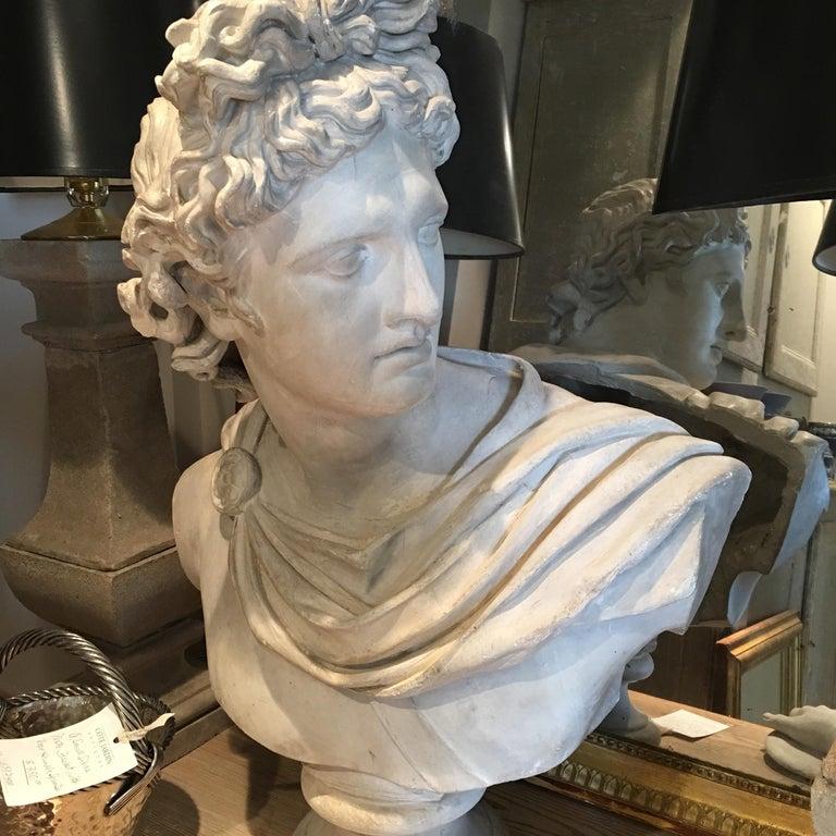 19th Century Plaster Head of Apollo For Sale