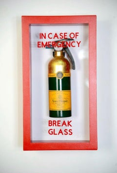 """In Case Of Emergency - Compact Vueve Fire Extinguisher"""