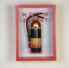 """In Case of Emergency Break Glass"" Compact  Edition Fire Extinguisher"