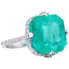 Nina Runsdorf Platinum 15.87 Carat Colombian Emerald Ring