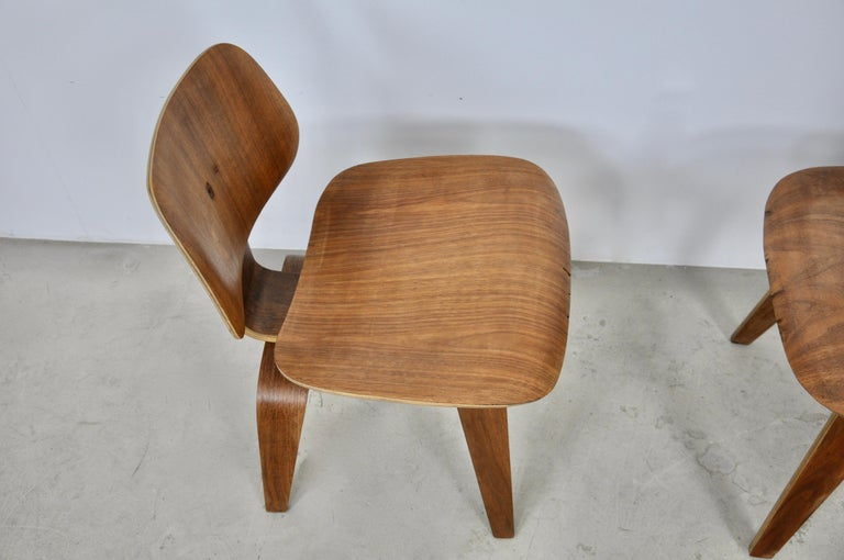 Plywood Chair DCW by Charles Eames for Evans 1950s For Sale 3
