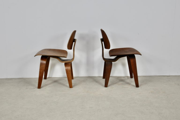 Central American Plywood Chair DCW by Charles Eames for Evans, 1950s For Sale