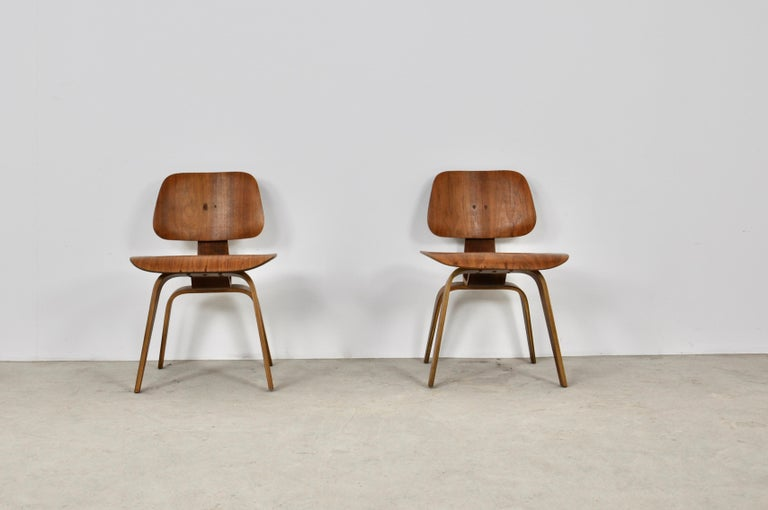 Plywood Chair DCW by Charles Eames for Evans 1950s In Distressed Condition For Sale In Lasne, BE