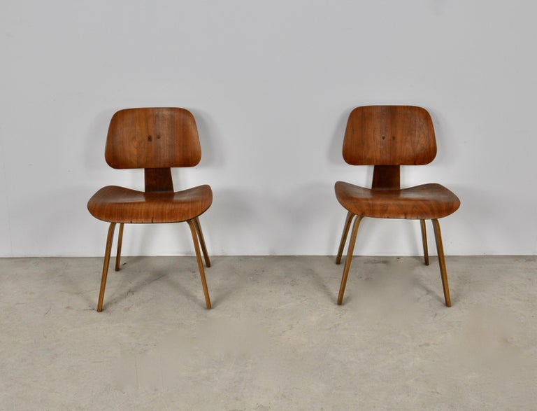 Mid-20th Century Plywood Chair DCW by Charles Eames for Evans 1950s For Sale