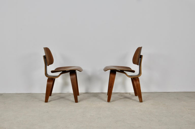 Plywood Chair DCW by Charles Eames for Evans 1950s For Sale 2