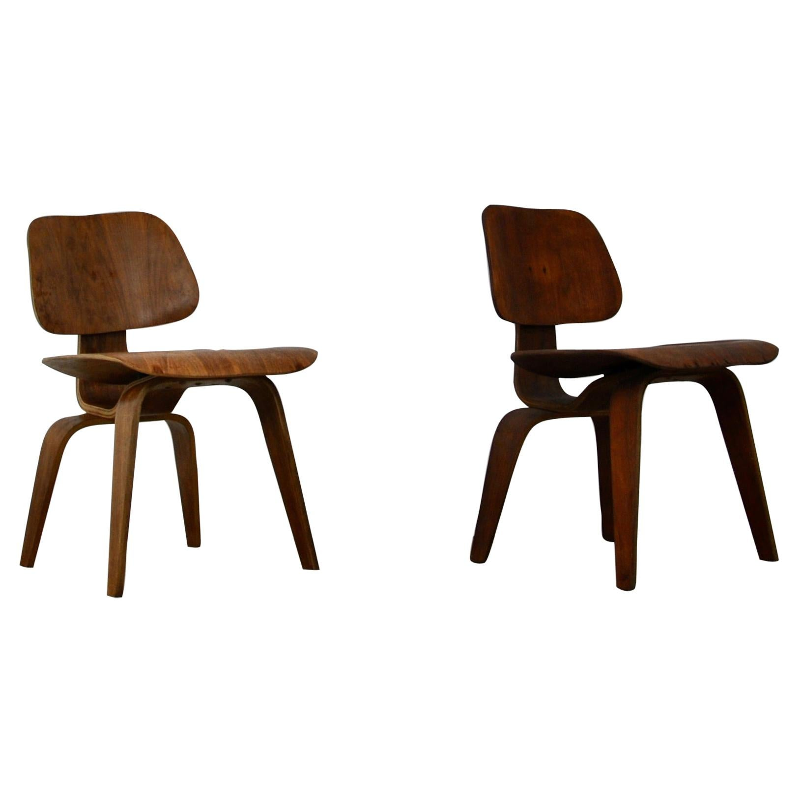 Plywood Chair DCW by Charles Eames for Evans, 1950s