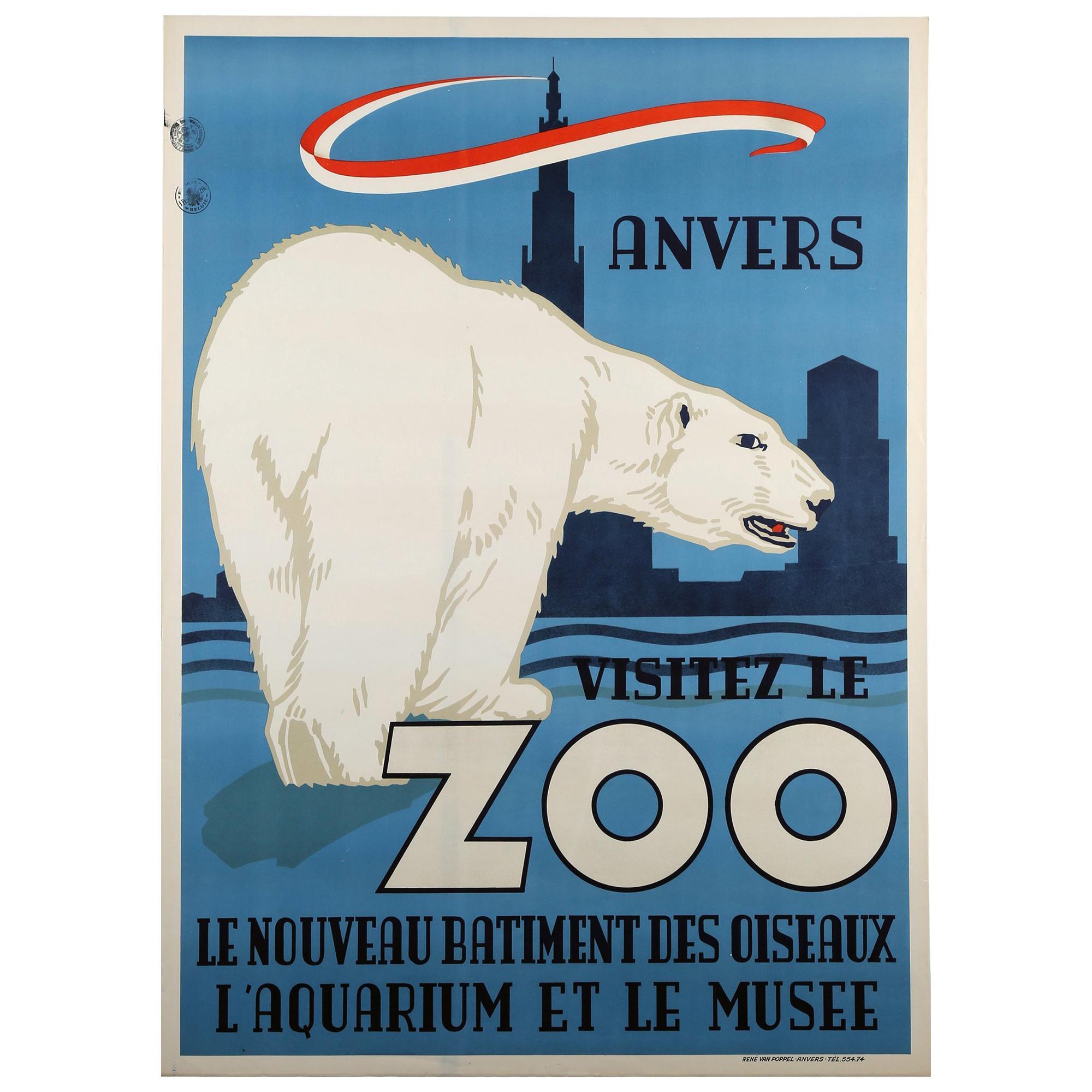 Polar Bear, Belgium, Zoo, Poster, 1950, Vintage Rare