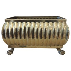 Polished Brass Rectangular Cachepot with Small Lion's Paws
