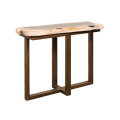 Polished Petrified Wood Console Table with Modern Iron Base