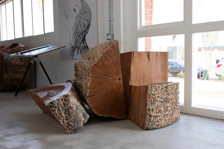 This live edge Eucalyptus sculptural
