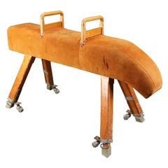 Pommel Horse 'Leather'