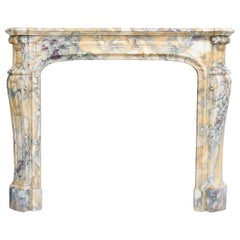 Pompadour Style Antique Fireplace of Breche De Vendome Marble, 19th Century