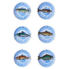"Porcelain Hanging Platters ""Piscibus"" by Piero Fornasetti"