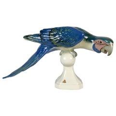 Porcelain Midcentury Royal Dux Macaw Parrot, Czechoslovakia, 1960s