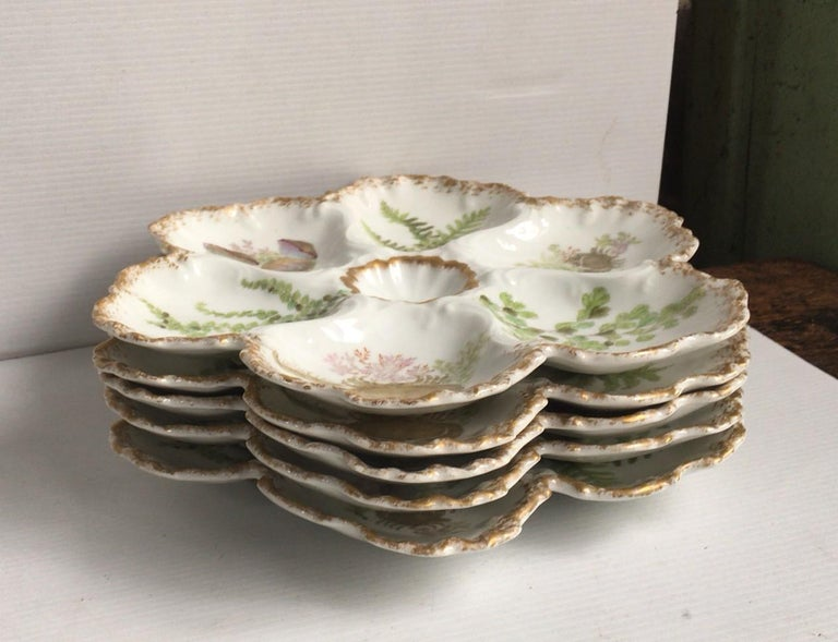 Porcelain oyster plate with seaweeds, crabs and shells Limoges, circa 1900.