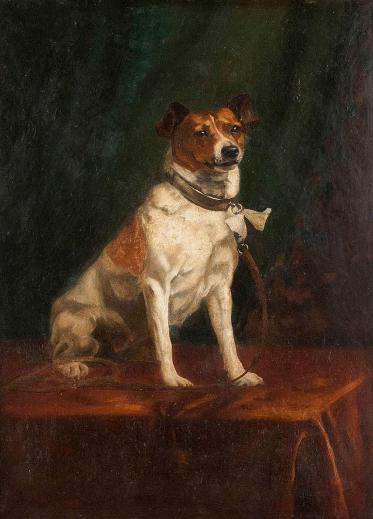 Beautiful portrait of a dog, it is a fox terrier. The dog is sitting on a table and has a nice bow on her collar. This portrait is not signed. It was probably made in Belgium circa 1900. It is oil on canvas. The list is from the same period. The