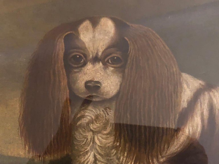 Edwardian Portrait of a Cavalier King Charles Spaniel, oil on canvas, 20th Century  For Sale