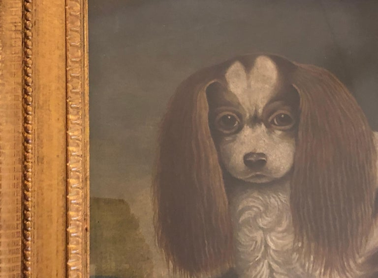 Canvas Portrait of a Cavalier King Charles Spaniel, oil on canvas, 20th Century  For Sale