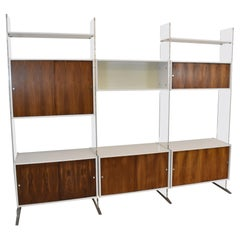 Danish Lucite and Rosewood Modular Wall Unit, Shelves, Cabinet