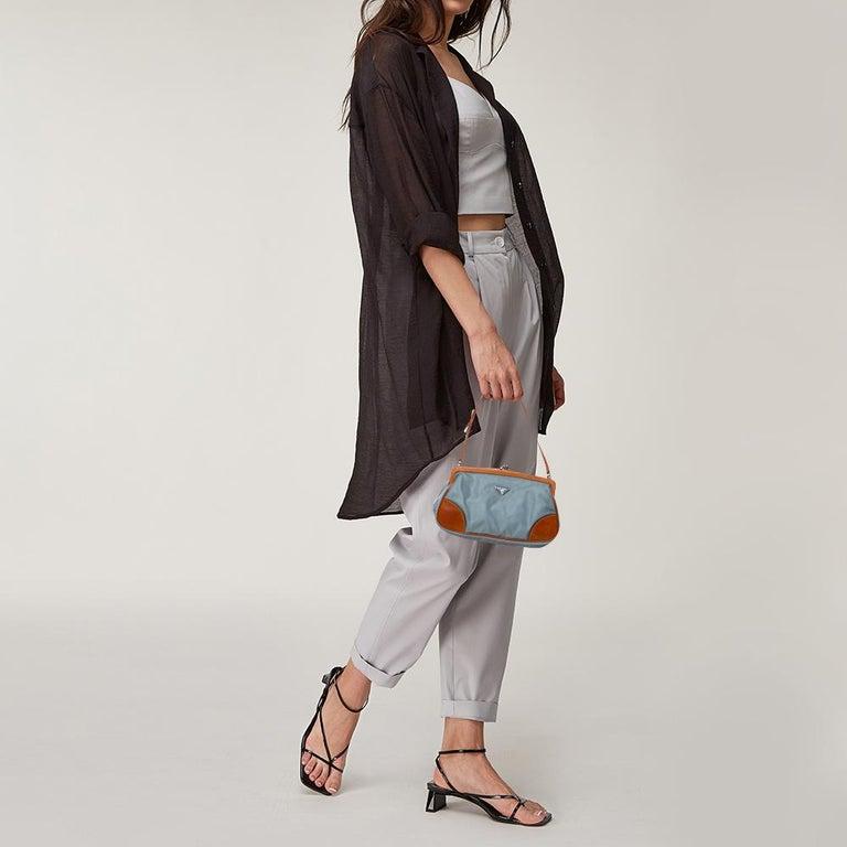 Gray Prada Blue/Brown Nylon and Leather Frame Pochette Bag