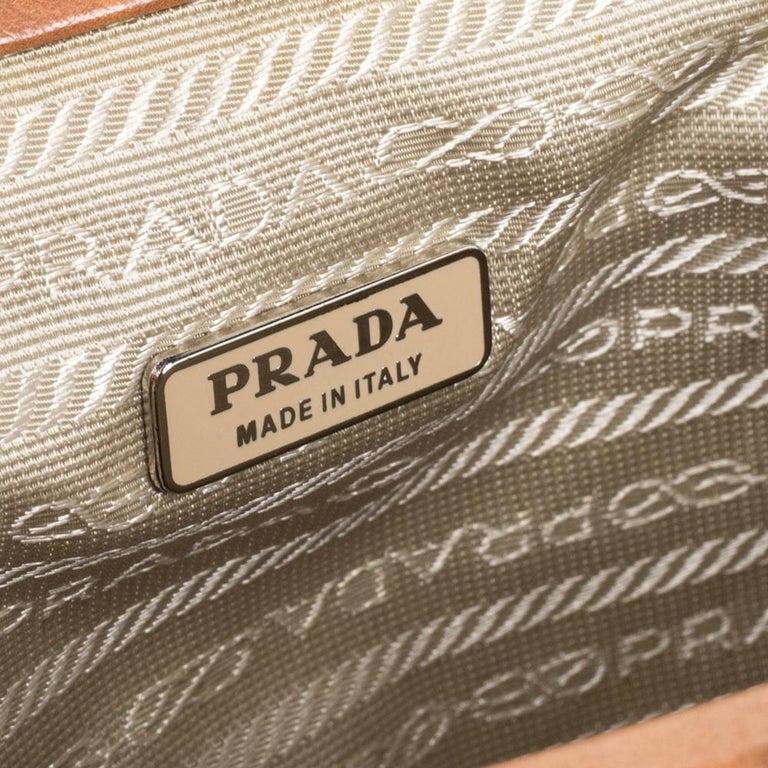 Prada Blue/Brown Nylon and Leather Frame Pochette Bag 1