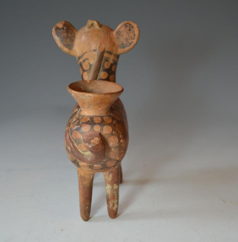 18th Century and Earlier Pre Columbian Rare Recuay Deer Vessel  C 200 BC  Provenance Ex Darwin Keynes For Sale