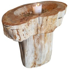 Prehistoric Petrified Wood Basin and Pedestal