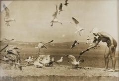 On the Beach with the Seagulls, circa 1930  - Silver Gelatin B & W Photograph