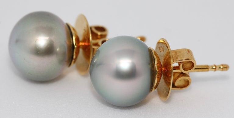 Modern Pretty, Natural Tahiti Pearl Stud Earrings, 18 Karat Gold For Sale