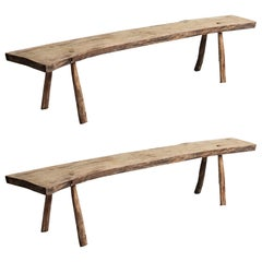 Primitive Curved Oak Benches, France, circa 1890