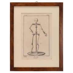 Print Depicting a Dummy, France, 1890