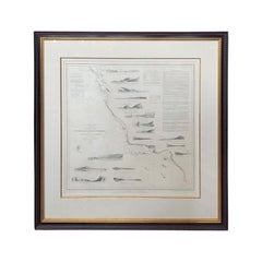 Print of Reconnaissance of the West Coast of U.S. San Francisco to San Diego Map
