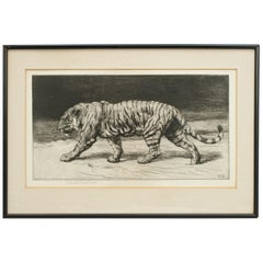 Prowling Tiger by Herbert Dicksee 1915, Etching, Signed in Pencil