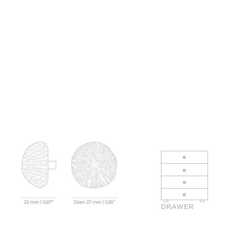Polished Urchin OC2015  Cabinet Hardware  Drawer Handle For Sale